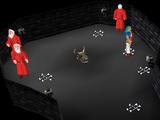 Chaos druid