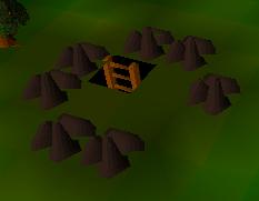 Monks friend dungeon