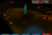 Yanille Agility Dungeon Room Before Salarins