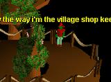 Tree Gnome Village General Store