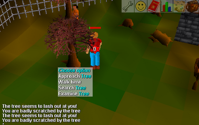 Dangerous tree west ardy