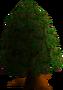 Tree (pointy)