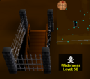 Deep Wilderness dungeon