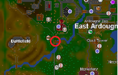 Purple dye location