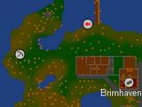 Brimhaven mine