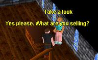 Legends' Guild General Store