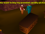 Nurmof's Pickaxe Shop