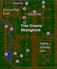 Tree Gnome Stronghold Runescape Classic Wiki Fandom