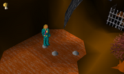 Wilderness Agility Course1