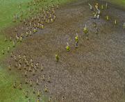 Mountain siege