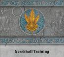 Nerekhall Training