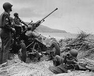 Bofors-aa-gun-algeria