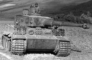 Tiger-tank-23