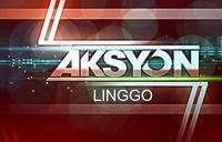 Aksyon Linggo 2011