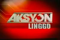Aksyon Linggo 2010