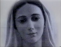 ABC 5 Virgin Mary-3