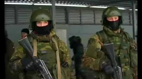Spetsnaz FSB in action (Russian Army) (2011-2012)