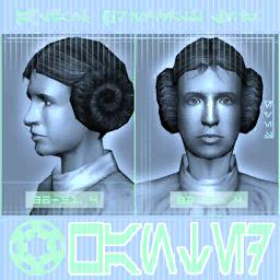 Leia wanted SWG