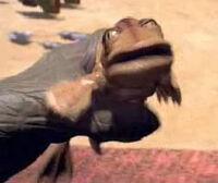 Longtailfrog