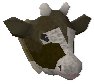 Cow detail