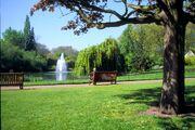 Buckingham park tfa