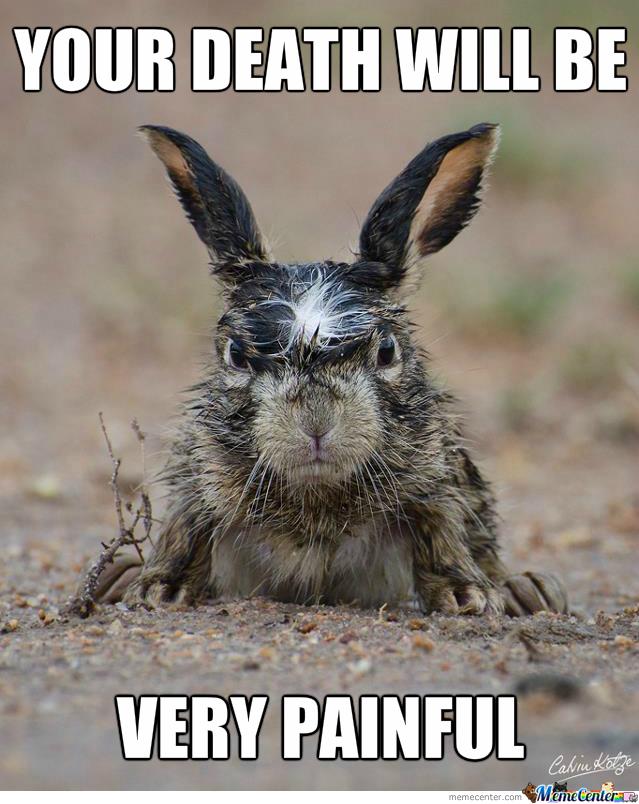 latest?cb=20161016162348 image angry bunny meme 11 jpg rwby wiki fandom powered by wikia,Angry Meme