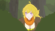 Yang finds the ursas