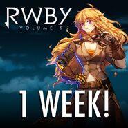 1 weeks volume 5