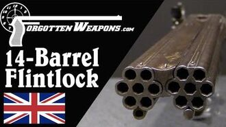 Perdition to Conspirators! Magnificent 14-Barrel Flintlock