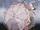 Neopolitan's Umbrella
