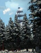 Argus tower crop