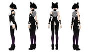 Blake Turnaround Back copy