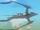 Winter's Airship