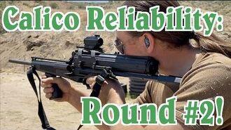 Calico Reliability Testing Round 2