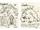 King Taijitu/Image Gallery