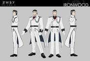 Ironwood Vol4 Concept Art