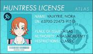 Nora License