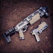 Shotgun and Pistol