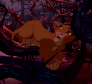 Simba crawling through thorns to escape the hyenas