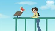 Aviva and Pelican