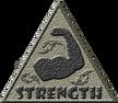 Strength Piece