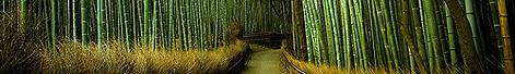 Bamboolong
