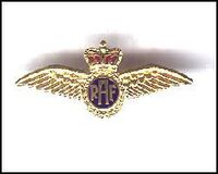 RAF Wing Badge