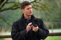 Dean 8