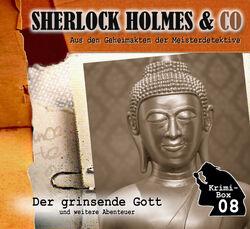 Sherlock Holmes & Co Krimi-Box 08