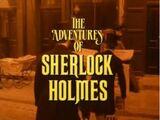 Die Abenteuer des Sherlock Holmes (TV-Serie, 1984-94)