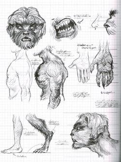 Werwolf Zeichnungen