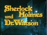 Sherlock Holmes und Dr. Watson (TV-Serie, 1980)