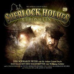 Sherlock Holmes Chronicles 29