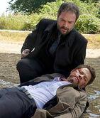 Crowley cas